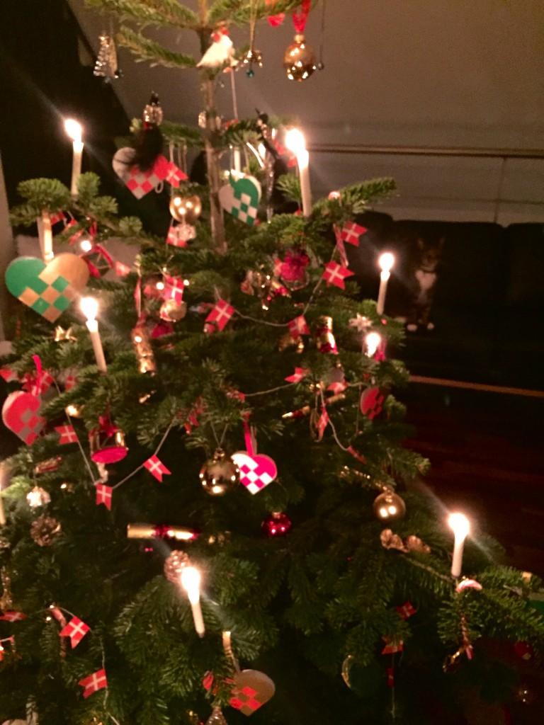 Juletræ og Tiger